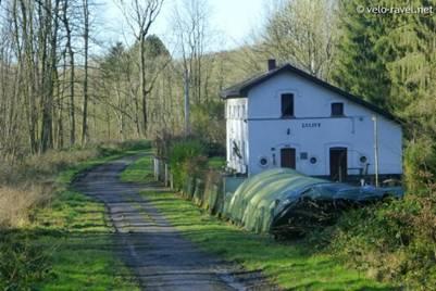 Ancienne ligne 240 bois de mariemont for Ancienne maison des gardes